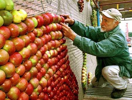 Apple pixels